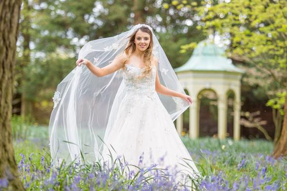 Woodland wedding bluebells in Cheshire