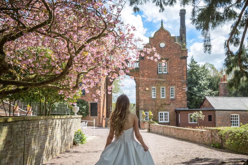Cherry Blossom Wedding Photo